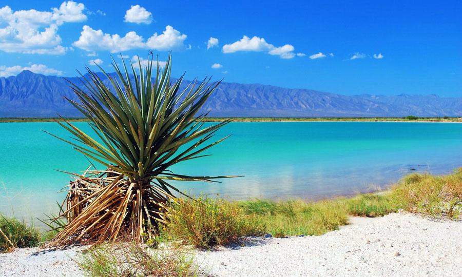 La Ruta Del Desierto, Coahuila