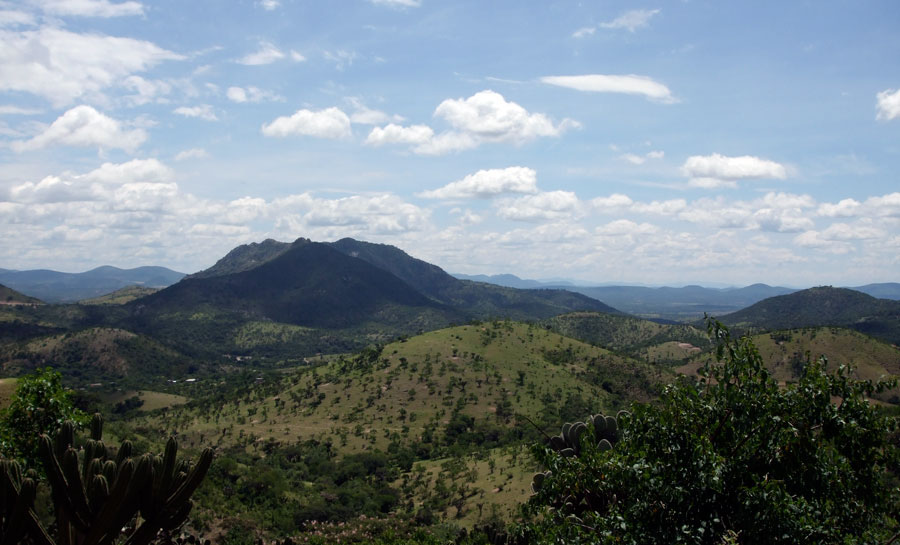 Reserva De La Biosfera Sierra De Huautla, Morelos