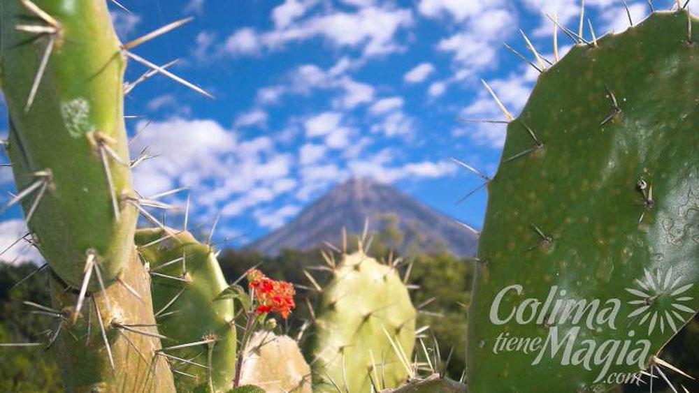 Turismo Rural En Colima
