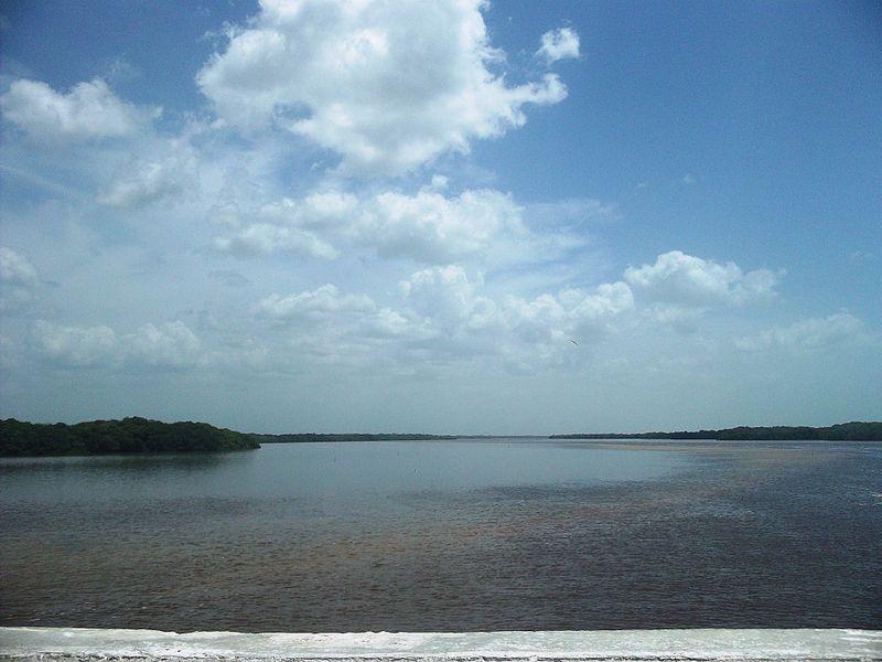Galeria De Fotos De Celestún Yucatan