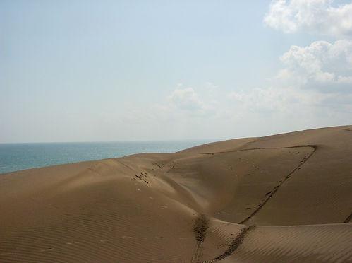 Fotos De Playa Mocambo, Veracruz