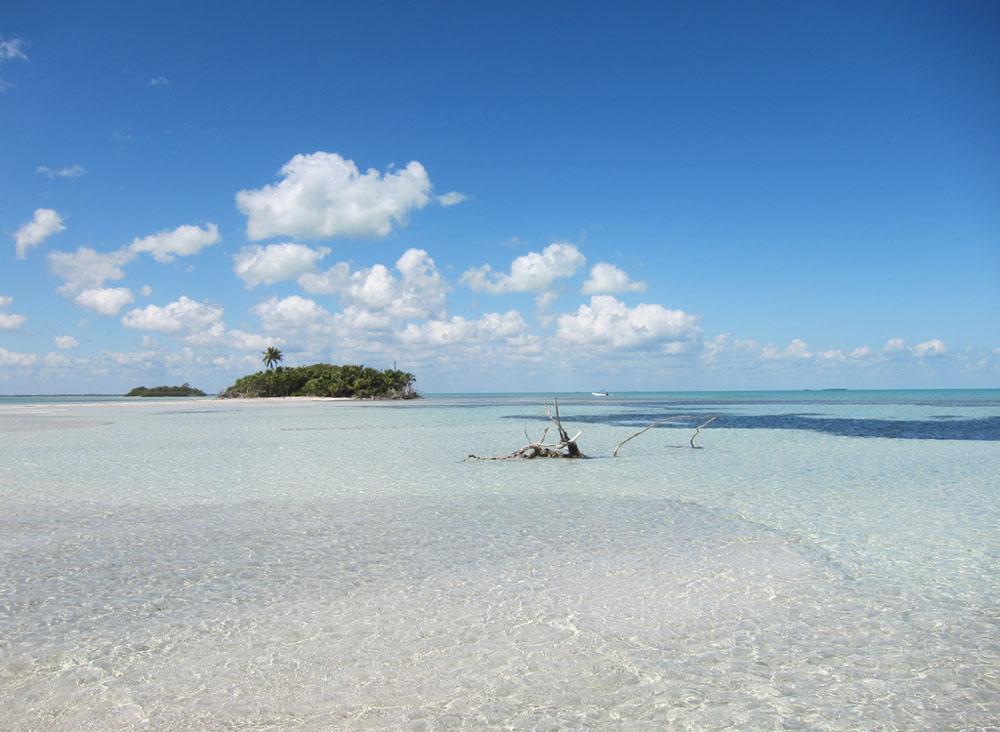 Fotos De Punta Allen Quintana Roo