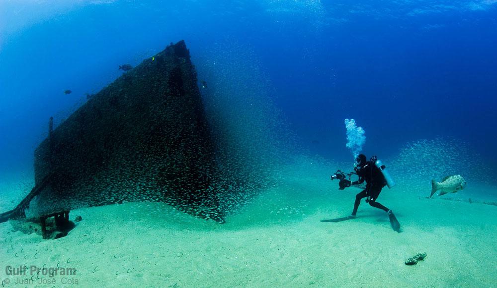 Fotos De Cabo Pulmo