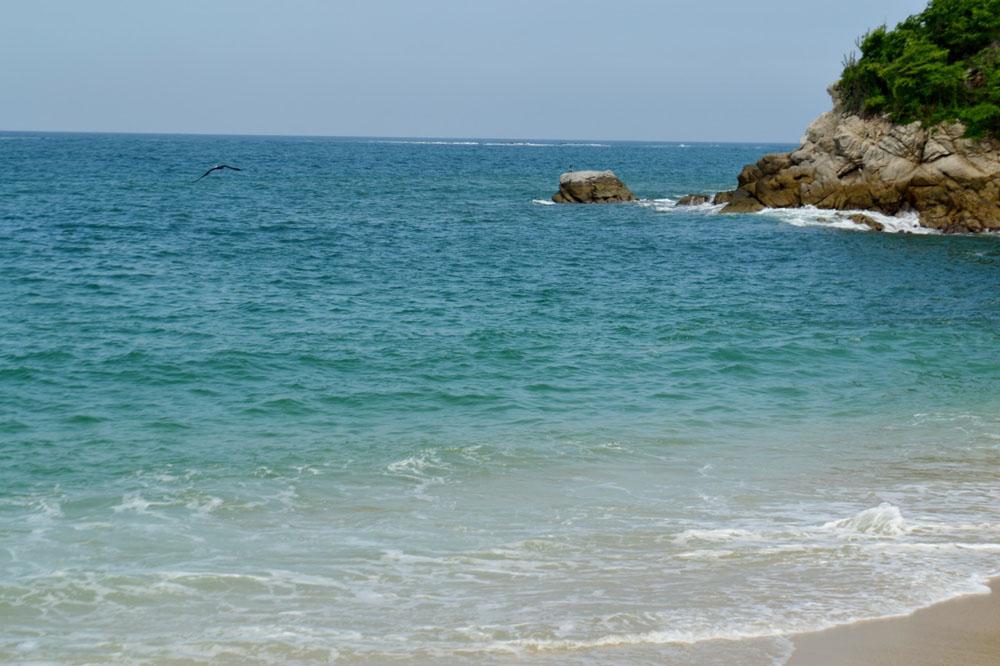 Fotos De Bahía De Cacaluta