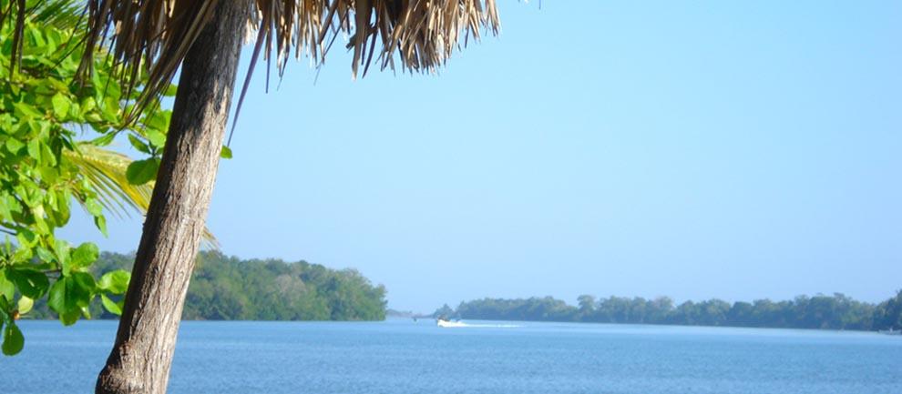 Fotos De Chocohuital Chiapas
