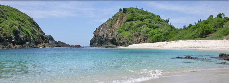 Fotos De Boca De Iguanas