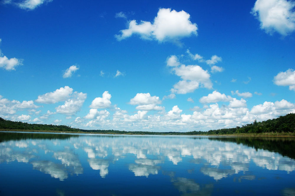 Área De Protección De Flora Y Fauna Otoch Ma'ax Yetel Kooh