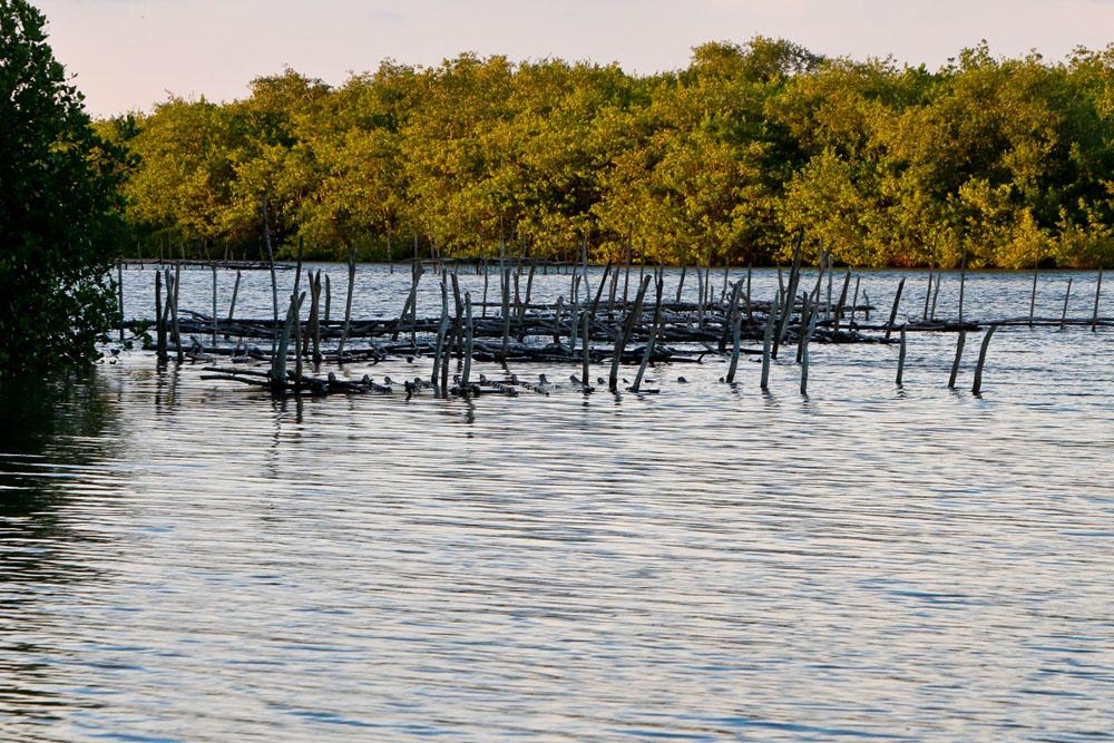 Fotos De Boca De Cachimín, Nayarit