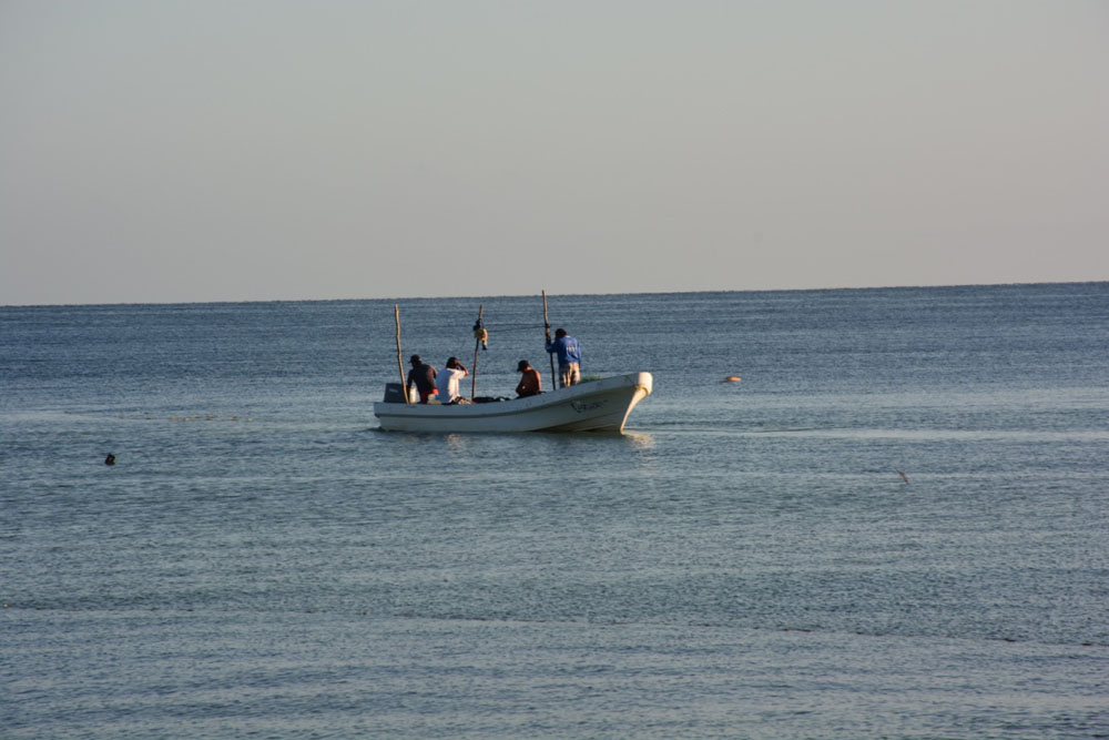 Fotos De Punta Xen, Campeche