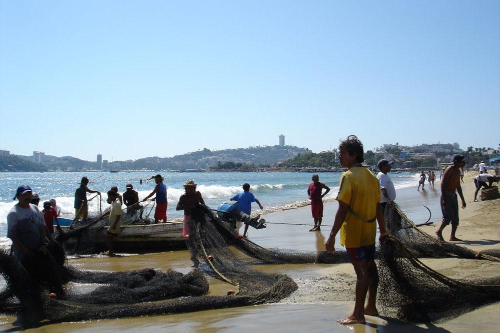 Fotos De Playa Tamarindos Guerrero