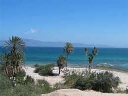 Fotos De Playa La Ventana Baja California Sur