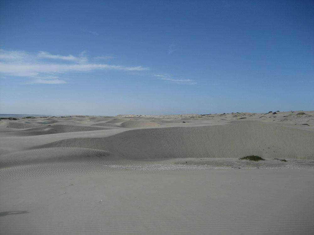 Fotos De Puerto San Carlos Baja California Sur