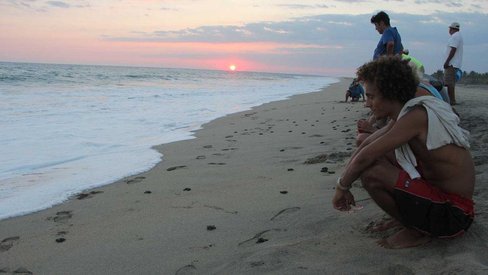 Fotos De Playa La Ventanilla Oaxaca