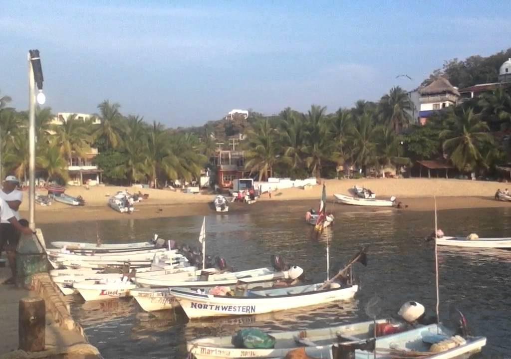 Fotos De Puerto Ángel Oaxaca