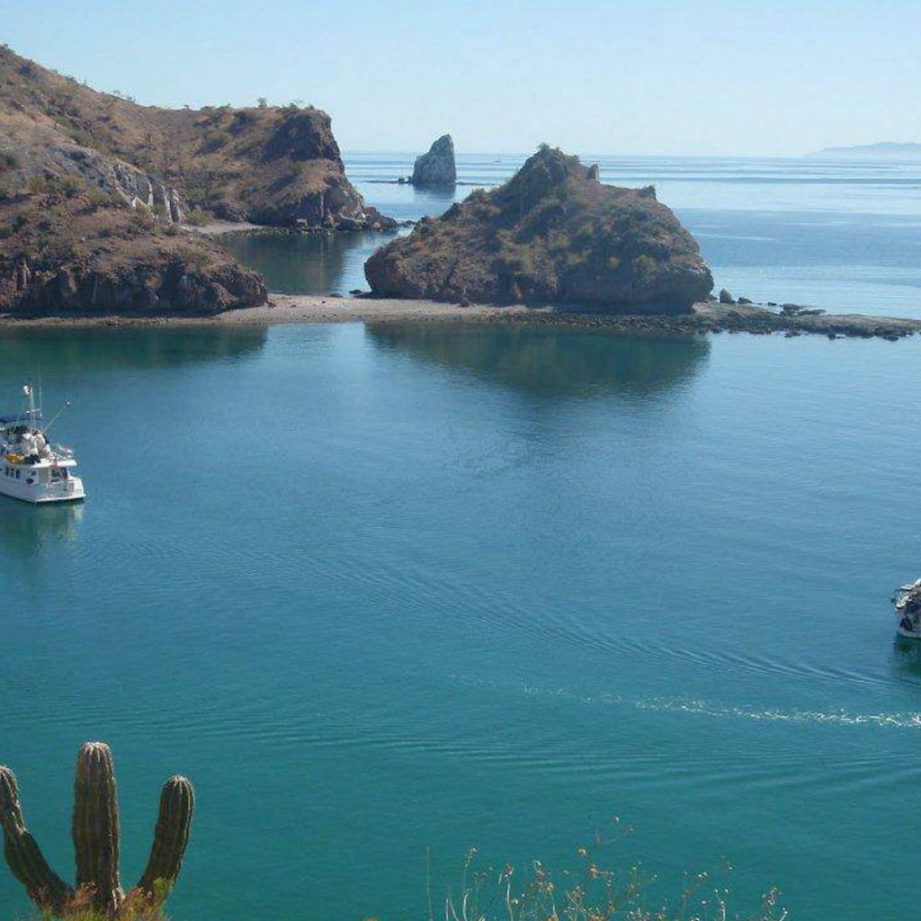 Fotos De Puerto Lobos Sonora