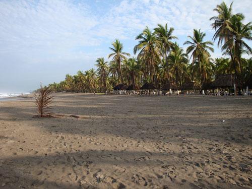 Foto De Playa Jardín Michoacán