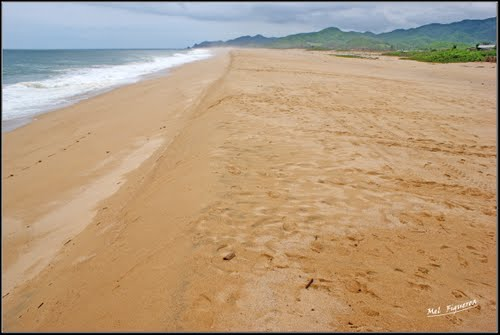 Fotos De Playa Motín De Oro Michoacán