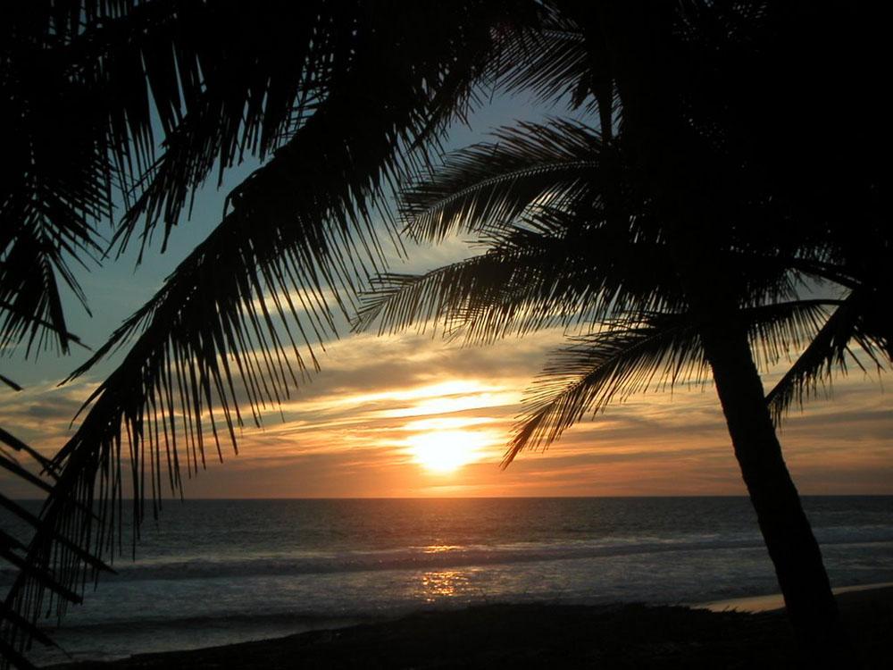 Fotos De Playa El Real, Colima
