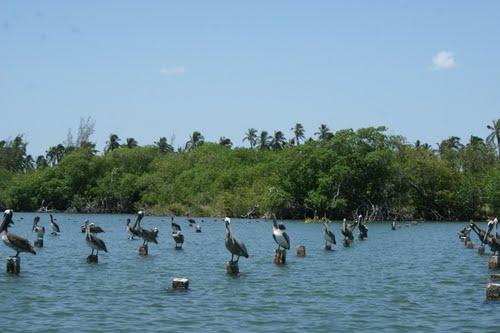 Fotos De Nuevo Paraíso, Tabasco