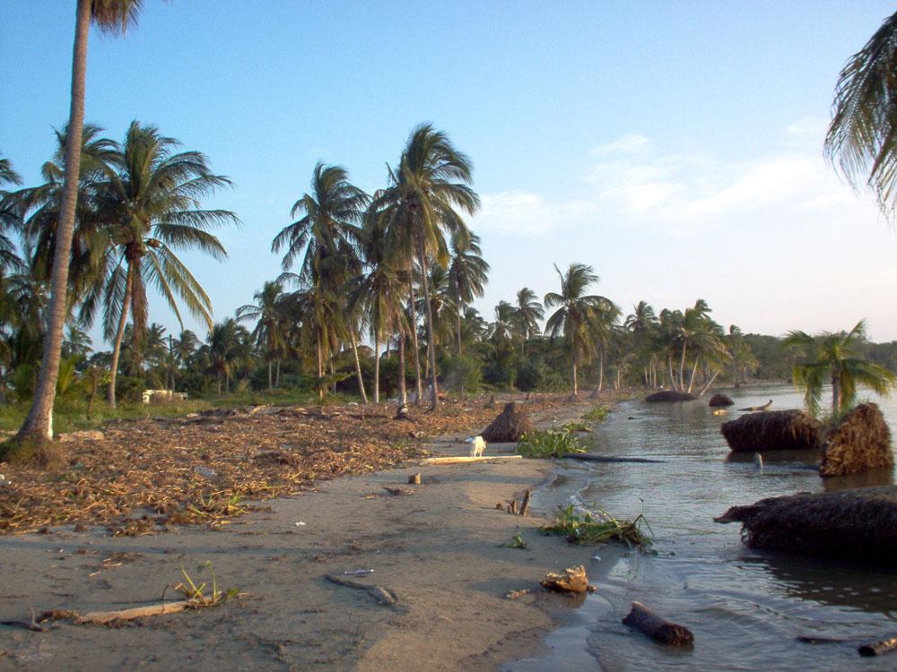 Fotos De Playa El Bosque, Tabasco