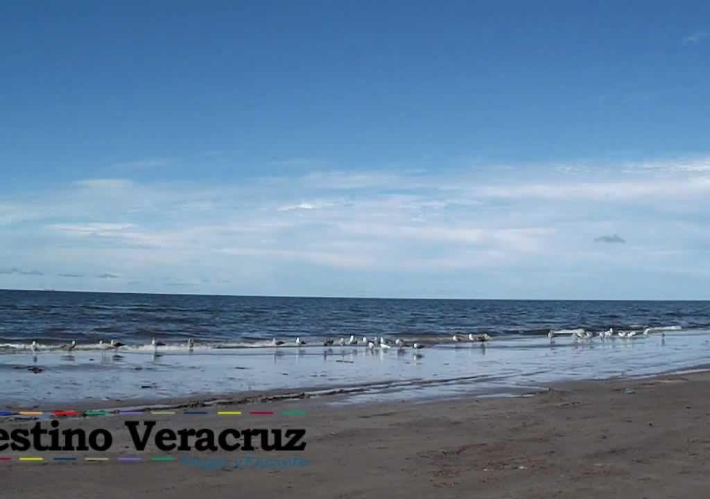 Fotos De Playa Antón Lizardo, Veracruz