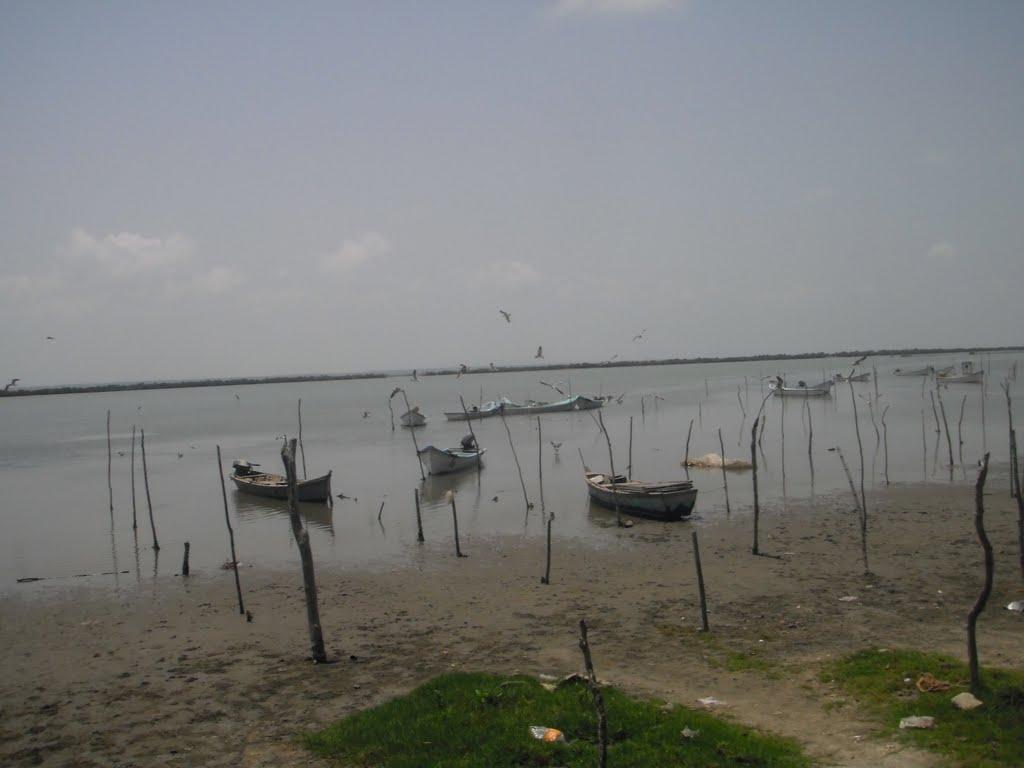 Fotos De Playa Tamiahua, Veracruz
