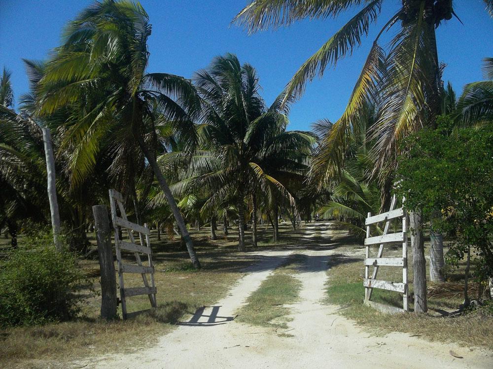 Atracciones Naturales De Quintana Roo
