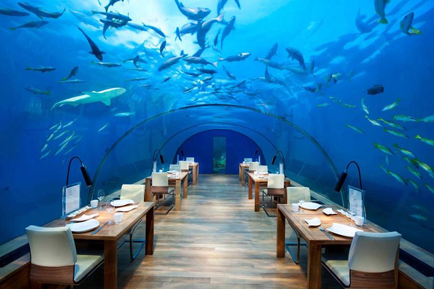 Los Hoteles Submarinos Más Sorprendentes
