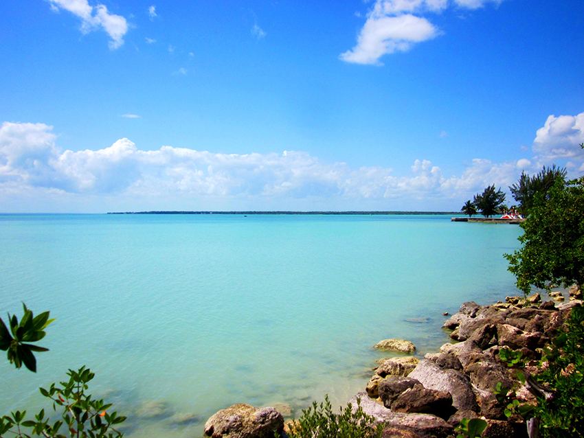 Algunos Atractivos De Bahía De Chetumal
