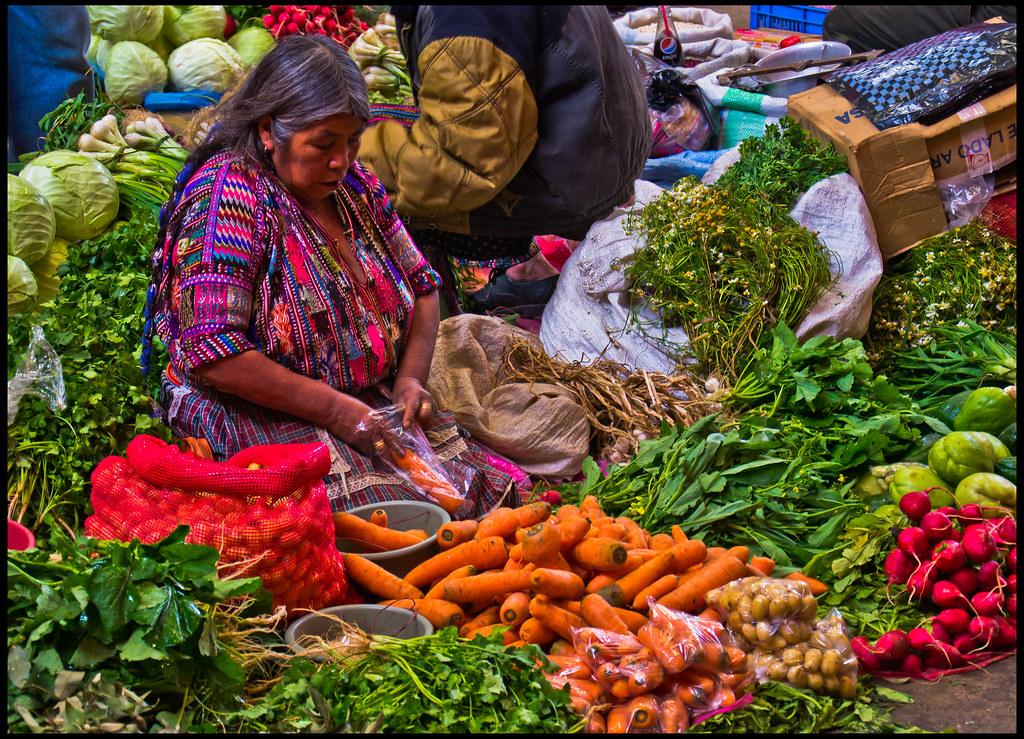 Visita Las Comunidades Mayas Del Sureste Y El Caribe Mexicano