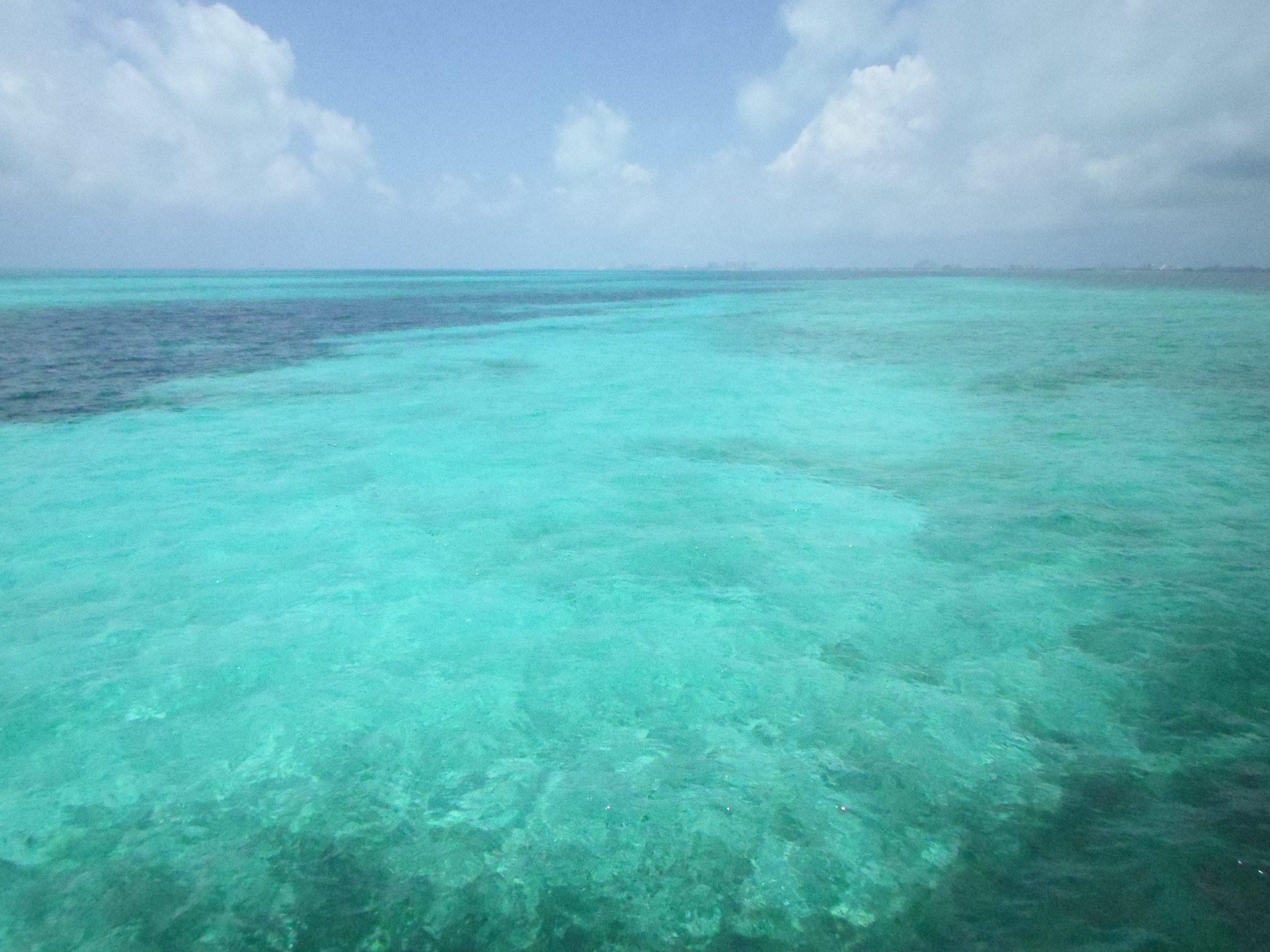 Vacías Y Limpias Se Presentan Las Playas De México Por La Cuarentena