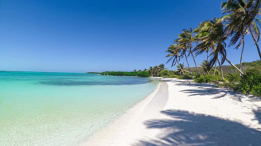 ¿Cuáles Son Las Playas Mejor Promocionadas De México Y Por Qué?
