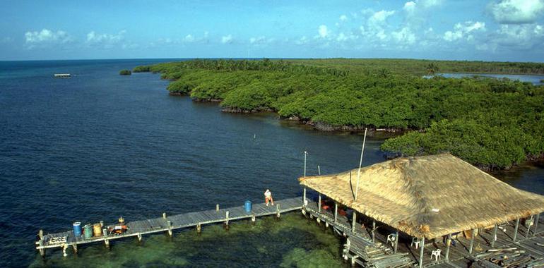 Reserva De La Biosfera Banco Chinchorro