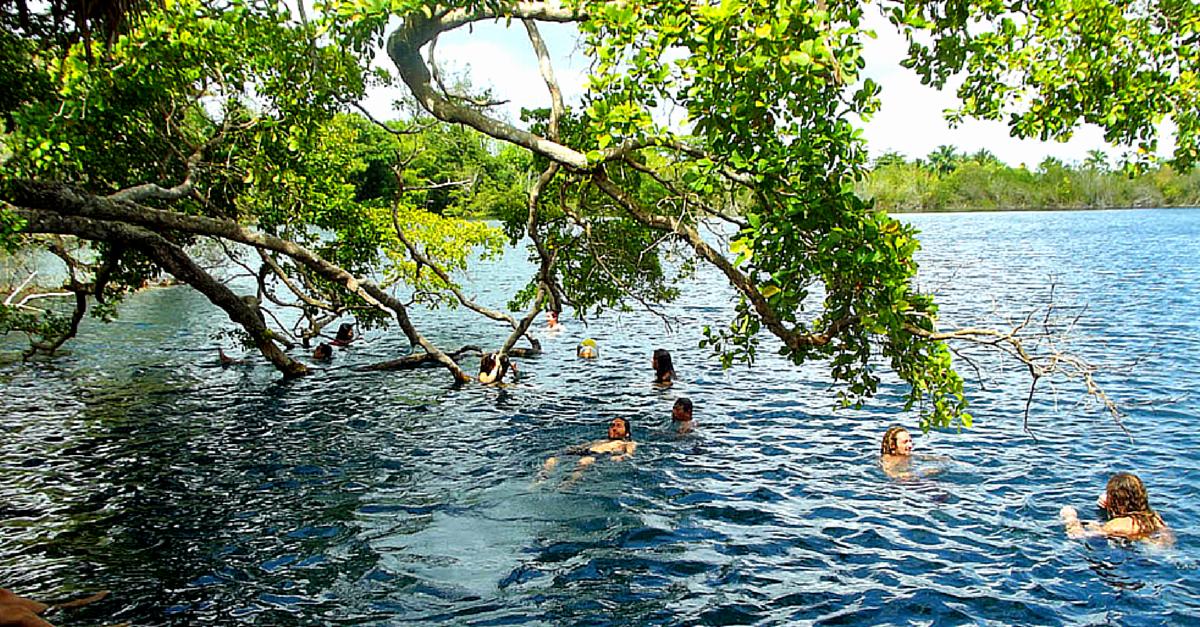 Paseo Ecoturístico En Bacalar Y Sus Cenotes